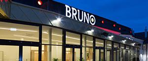 Bruno Brunn am Gebirge